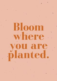 bloom where you are planted. quotes quotes about love quotes for teens quotes god quotes motivation The Words, Cool Words, Positive Quotes, Motivational Quotes, Inspirational Quotes, Positive Vibes, Poetry Quotes, Words Quotes, Sayings