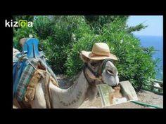 Kizoa Movie - Video - Slideshow Maker: Poze
