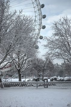 Winter by the London Eye  (LW19-2)