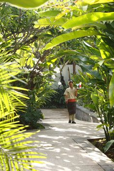 lush #tropical #garden #bali #balivillas #seminyak #travel
