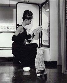 Holly & Cat.