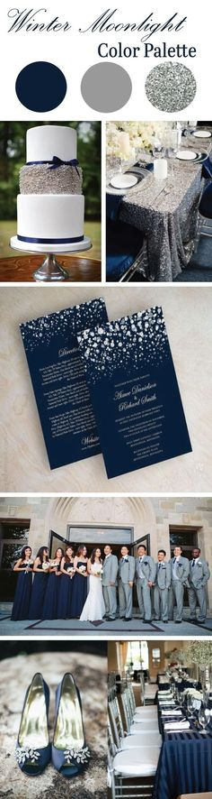 Winter Moonlight Color Palette: Featuring stunning Navy & Silver hues.