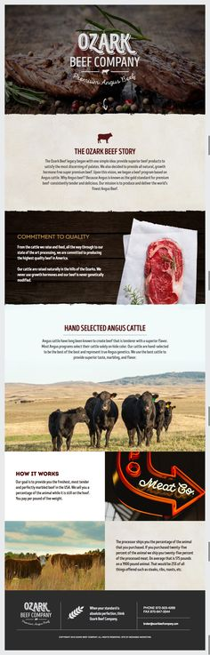 Branding and website design for Ozark Beef Company by MODassic Marketing.