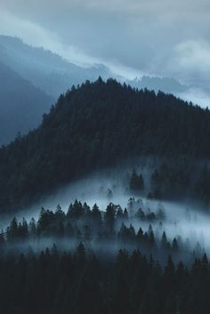Black Forest Germany