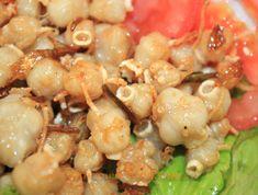 www.vietnamesefood.com.vn/octopus-tooth-rang-muc