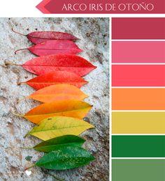 6 Paletas de Color para Otoño, porque el Otoño también tiene un Arco Iris de Colores hermosos, por eso dale la Bienvenida al Otoños con estás Lindas Láminas Binevenido Otoño en 3 colores. Encuéntralas en Imprime tu Fiesta