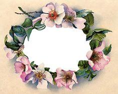 Victorian clip art stunning wild rose frame