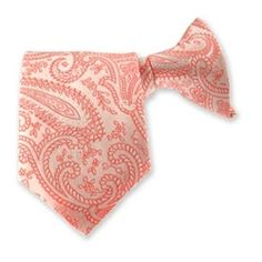 boys coral paisley clip on tie 695 3 sizes for children up