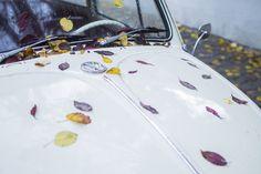 Autumn Vibes photo by Mihai Surdu (@mihaisurdu) on Unsplash