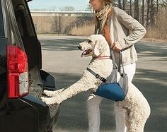 Kurgo Up and About Dog Lifter