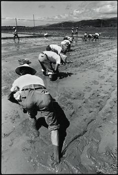 阮義忠 | 宜蘭礁溪, 1979
