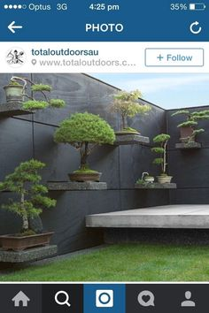 Bonsai shelves create simplicity in Japanese Garden space.  #japanesegardening Japanese Garden Plants, Japanese Garden Design, Japanese Garden Landscape, Japanese Fence, Japenese Garden, Japanese Bonsai Tree, Japanese Spa, Japanese Wall, Japanese Patio Ideas