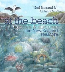 At the Beach:explore & discover the New Zealand seashore is a finalist in the 2013 NZ Post Children's Book Awards. Great Books, My Books, Nonfiction Books For Kids, Children's Book Awards, Walking In Nature, Book Publishing, Writing A Book, The Book, New Zealand