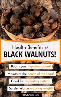 Welcome to Gabriel Atanbiyi Blog: Black Walnuts – Reasons Why You Must Eat Them!