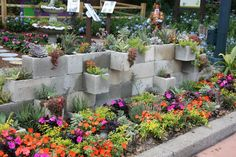 Cinder Block Flower Bed Flower Bed Blocks Large Size Of Beautiful Cinder Block R… - All For Garden Cinder Block Walls, Cinder Block Garden, Cinder Blocks, Raised Bed Garden Design, Building A Raised Garden, Succulent Landscaping, Backyard Landscaping, Backyard Ideas, Garden Ideas