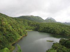 Morne Trois Pitons Nationalpark Dominica   Travel Dominica