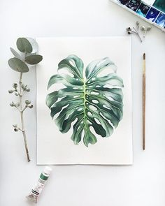 Flower art painting draw artworks 67 New ideas Botanical Art, Botanical Illustration, Watercolor Illustration, Watercolor Flowers, Watercolor Paintings, Painting & Drawing, Drawing Flowers, Painting Flowers, Leaf Paintings