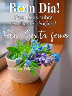 Planter Pots, Quotes, Portuguese, Good Morning Beautiful Images, Good Nite Images, Good Morning Wishes, Cell Wall, Ser Feliz, Poems
