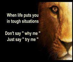"""Quando a vida te conduz a situações duras, não digas: """"Porquê eu?"""" Diz antes: """"Testa-me"""""""