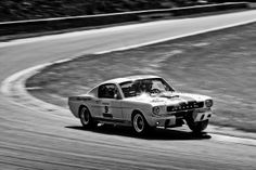 Ford Shelby GT 350 (1965) | Flickr - Photo Sharing!