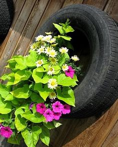 old tire planter on a fence