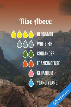 Rise above - bergamot, white fir, coriander, frankincense, geranium and ylang ylang