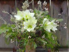 Florali-winter