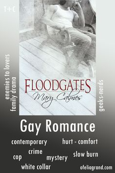 Floodgates by Mary Calmes - contemporary gay romance book #mmromance #gayromancebooks #readwithofelia Slow Burn, Reading Challenge, Character Names, Mystery Books, First Page, Romance Books, Law Enforcement, Burns, It Hurts