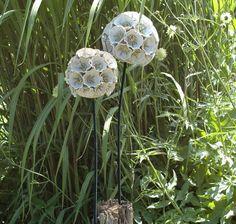 Pincushion Flower by Frances Doherty. Still Life, Handbuilt Sculpture Ceramics, using Stoneware, Wood and Metal.