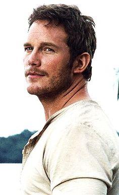 Jurassic World Chris Pratt, Jurassic World Fallen Kingdom, Jurassic Park Film, Jurassic Park World, Peter Quill, Gaurdians Of The Galaxy, Avengers, Falling Kingdoms, Attractive People
