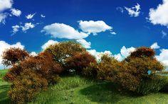 Understanding the Role of Light in Photosynthesis Nature Desktop Wallpaper, Field Wallpaper, Landscape Wallpaper, Cool Wallpaper, Desktop Wallpapers, 3d Landscape, Forest Landscape, Fantasy Landscape, Claude Monet