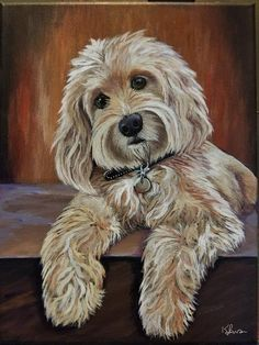 Pictures To Paint, Dog Pictures, Frise Art, Doodle Dog, Illustration, Dog Portraits, Animal Paintings, Beautiful Dogs, Dog Art