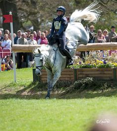 Vittoria Panizzon and Borough Pennyz - Badminton Horse Trials 2013 - 5th May - Cross Country - photo @ Equus Pix