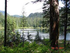 Lodge Lake.  Kid-friendly, Dog-friendly apline hike