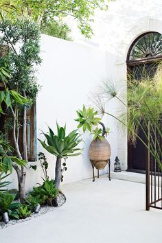 Home Feature - Exotic Melbourne Mix