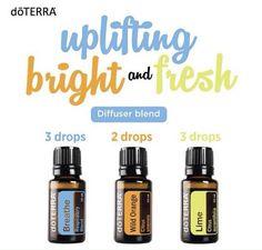 uplifting, bright & fresh
