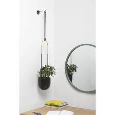 Add fresh greenery to your home with the Umbra Bolo Hanging Planter . The ceramic planter comes with all the necessary hanging hardware, including. Hanging Plants Outdoor, Metal Hanging Planters, Hanging Pots, Indoor Planters, Ceramic Planters, Plants Indoor, Patio Plants, Indoor Garden, Diy Wall Planter