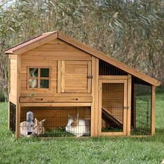 This charming two-story rabbit hutch with a view is ideal for groups of small animals. Pets can roam inside and outside, upstairs and downstairs, in the sun or in the shade while feeling safe and secure.