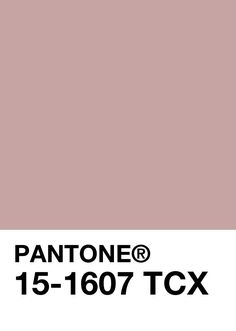 510,065,284.702 km^2 :: [PANTONE] January 30th, Color of the Day : 15-1607 Pale Mauve