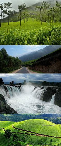 Bangalore to Munnar by Road - Get Ready For an Epic Trip