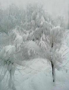Snowland by Kume Bryant