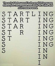 "The word ""startling"" is pretty badass."