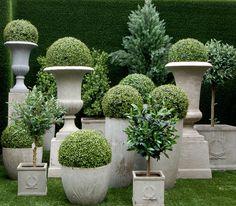 Macetas y copones Gardenexpress