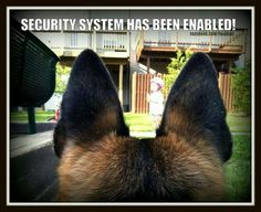 SECURITY SYSTEM HAS BEEN ENABLED!