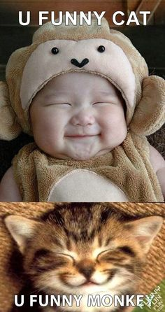 Funny Baby Pictures with Captions | Baby And Kitten Smilling Funny Animals Picture « Funny Fun Fun