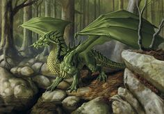 Green dragon - Lars Grant-West