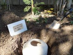 """""""Changing the way we think about burial for our pets and family members, one tree at a time"""" Memory Tree, Flowering Shrubs, One Tree, Losing You, Biodegradable Products, Things To Come, Let It Be, Pets, Outdoor Decor"""