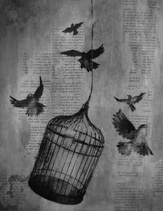 Pics For > Bird Cage Illustration Bird In A Cage, Bird Cages, Art And Illustration, Art Altéré, Cage Tattoos, The Caged Bird Sings, Timberwolf, Geniale Tattoos, Tatoo Art