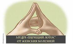 Лотос - символ Великой матери, возрождения и плодородия. Одновременно являясь ключом к мудрости и процветанию, энергия лотоса дарует силу Духа и исцеление.