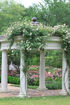 Dawn Pergola Pergola - like how they have plants starting half way up column.Pergola - like how they have plants starting half way up column. Diy Pergola, Pergola Swing, Backyard Pergola, Wooden Pergola, Backyard Landscaping, Pergola Ideas, Iron Pergola, Decking Ideas, Backyard Ideas
